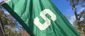 msu_flag_2